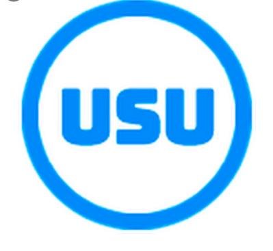 USU Салон