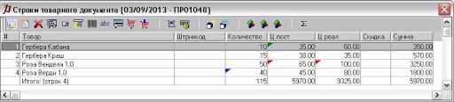 PAPYRUS FLOWER SHOP программа